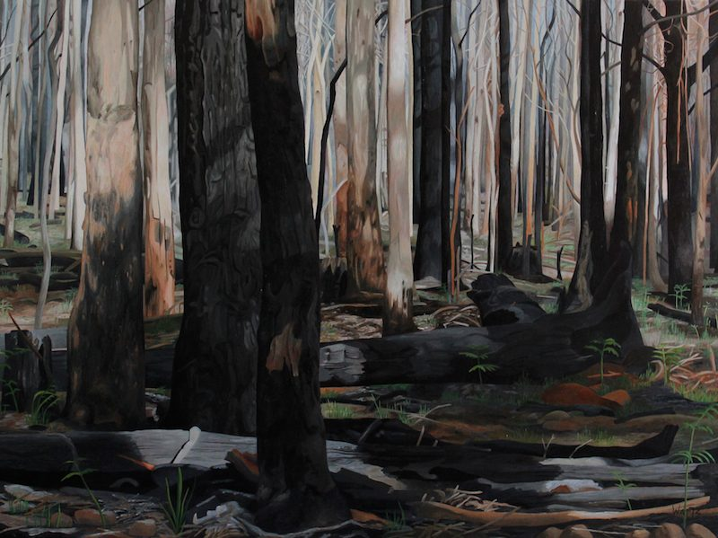mt-buangor-after-the-fires-122×92-paddington-prize-exhibition