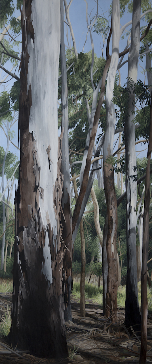 wombat-state-forest-3-2016-acrylic-on-linen